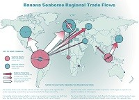 Banana seaborne regional trade flows map